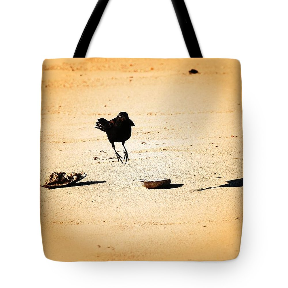 Jersey Shore Tote Bag featuring the photograph Hop Like A Bunny Bird - Jersey Shore by Angie Tirado