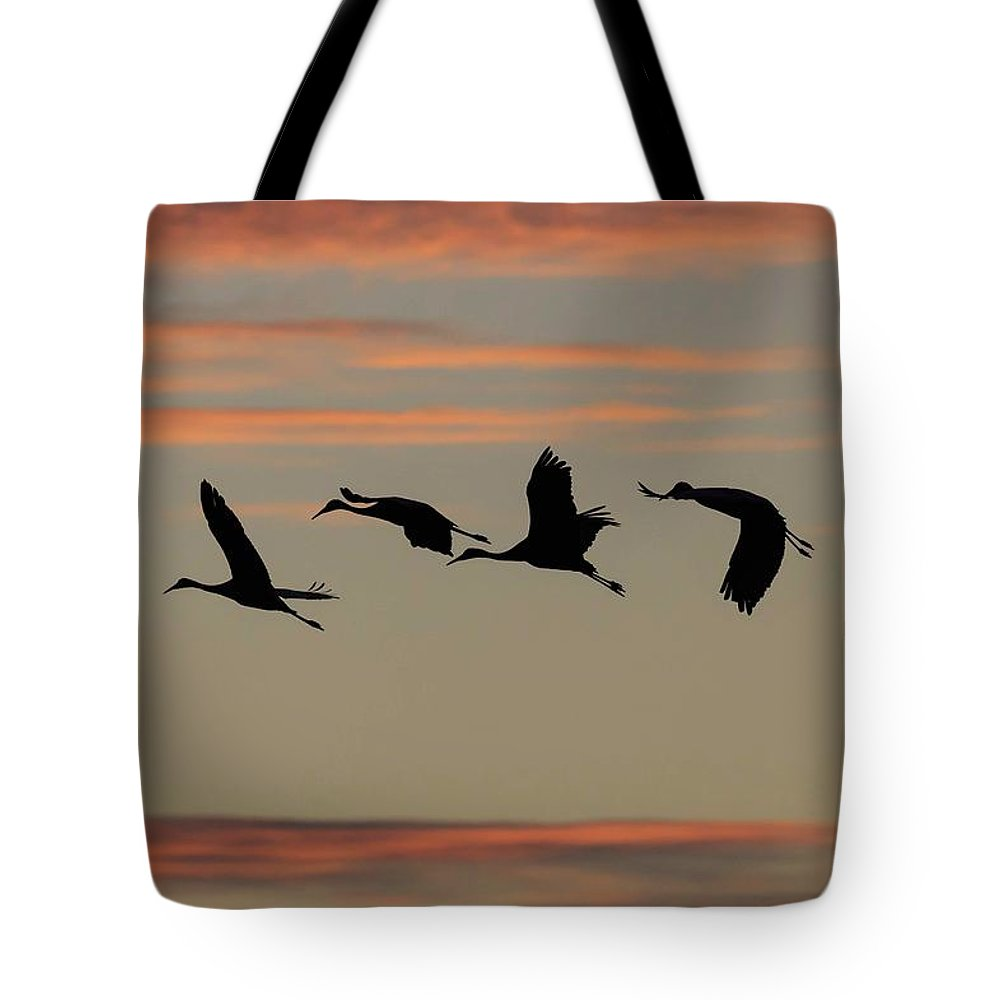 Birds Tote Bag featuring the photograph Horicon Marsh Cranes #2 by Paul Schultz