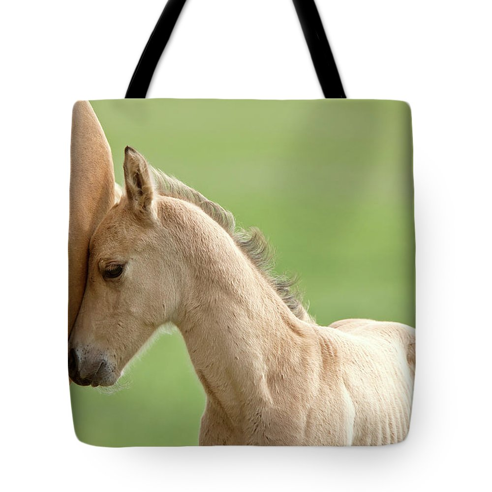 Horse Tote Bag featuring the digital art Horse And Colt by Mark Duffy