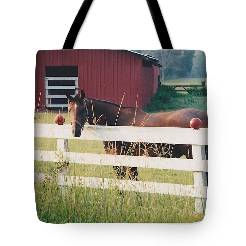 Landscape Tote Bag featuring the photograph Horse And The Barn by Michelle Powell