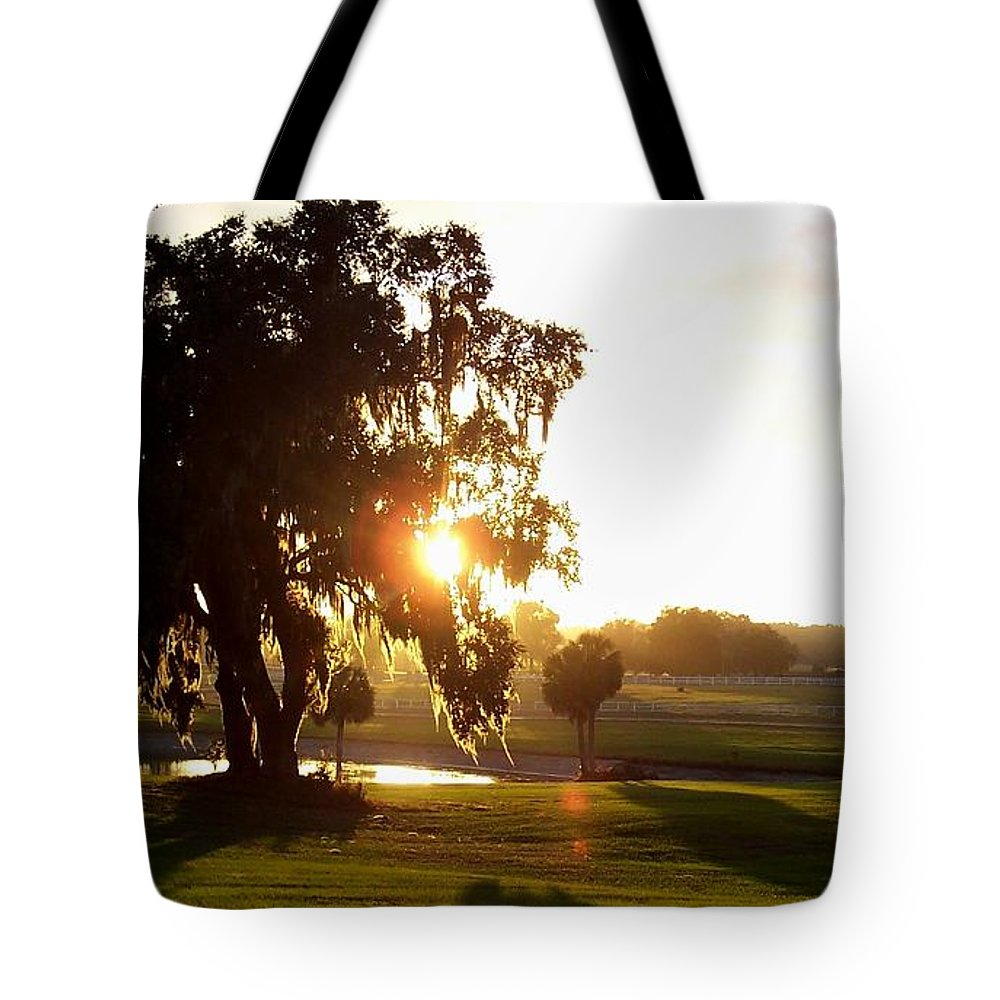 Sunset Tote Bag featuring the photograph Horse Country Sunset by Kristen Wesch