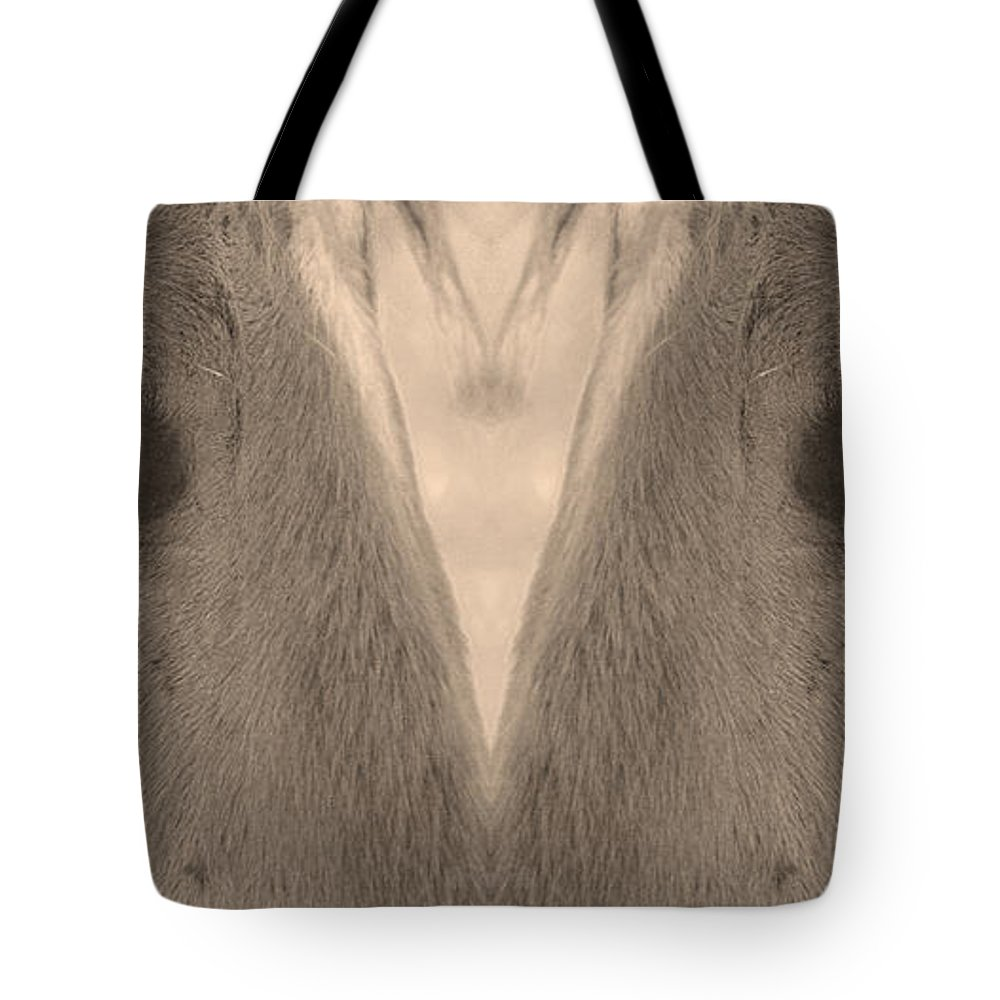 Close-ups-horse-horses Tote Bag featuring the photograph Horse Eyes Love Sepia by James BO Insogna