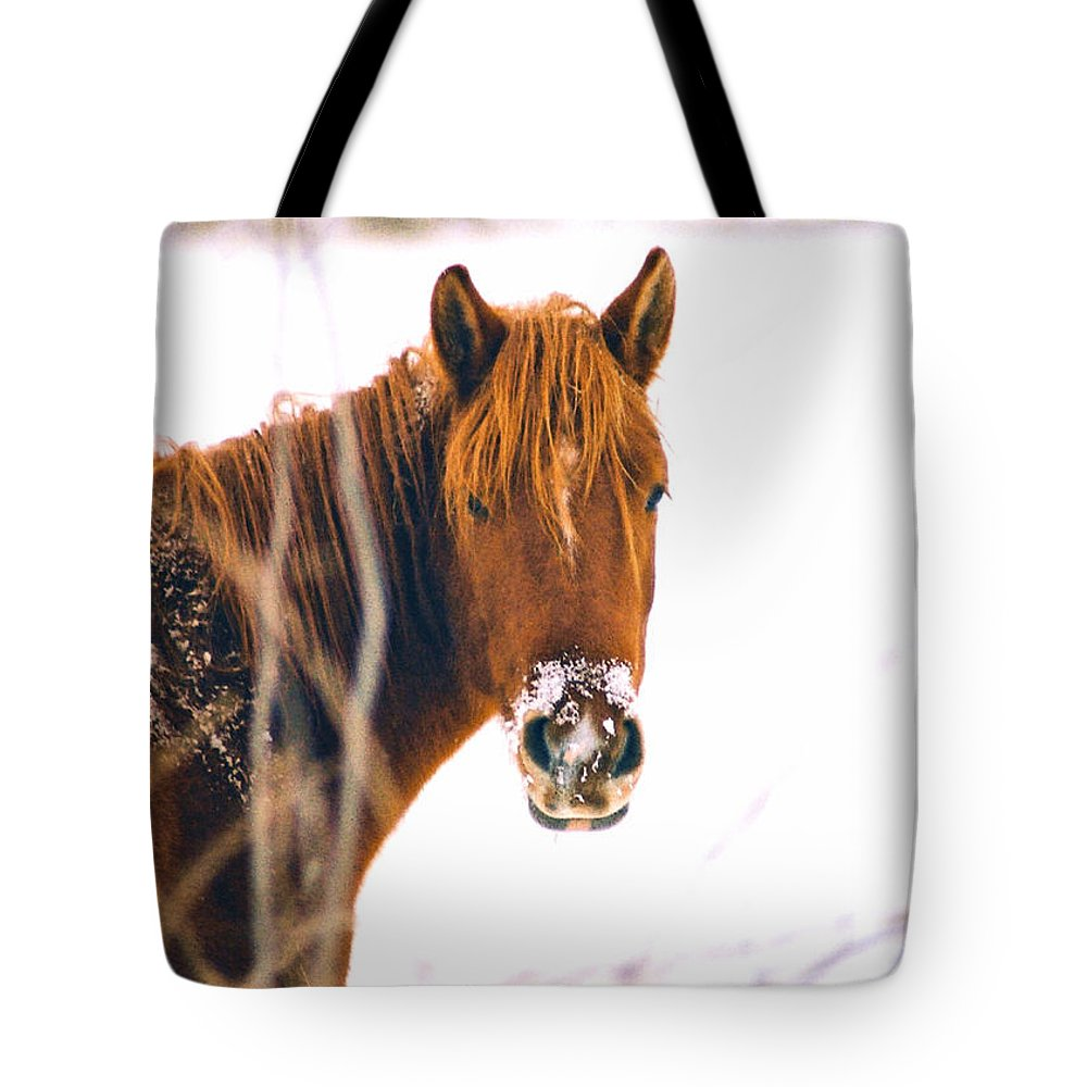 Horse Tote Bag featuring the photograph Horse In Winter by Steve Karol