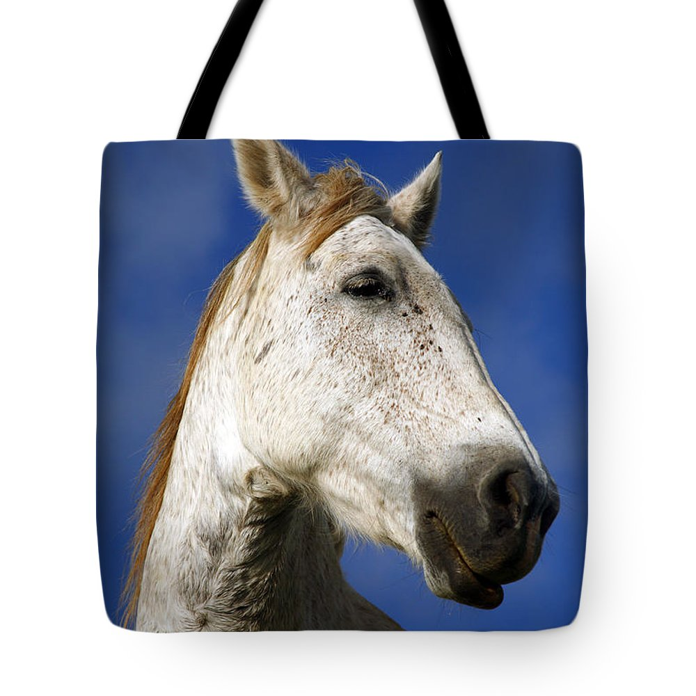 Animals Tote Bag featuring the photograph Horse Portrait by Gaspar Avila