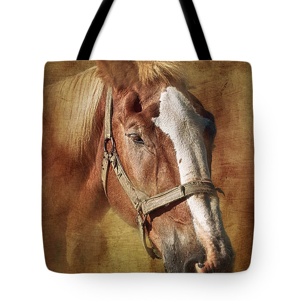 Horse Tote Bag featuring the photograph Horse Portrait II by Tom Mc Nemar