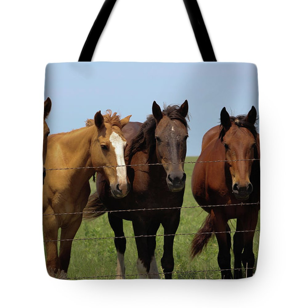 Flint Hills Tote Bag featuring the photograph Horse Quintet by Mike Parker