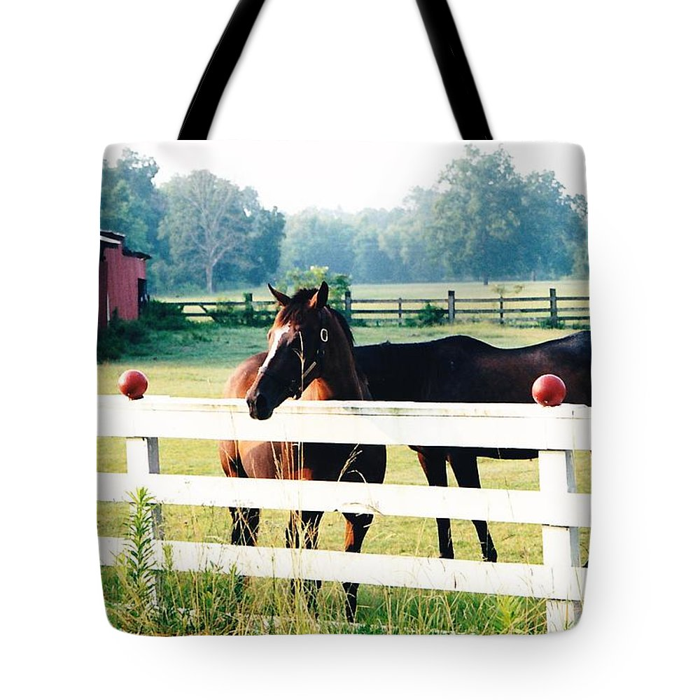 Horses Tote Bag featuring the photograph Horse Stable by Michelle Powell