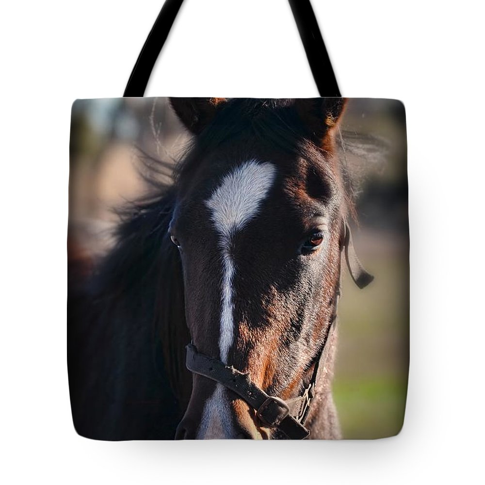 Horse Tote Bag featuring the photograph Horse Whispering by Georgiana Romanovna