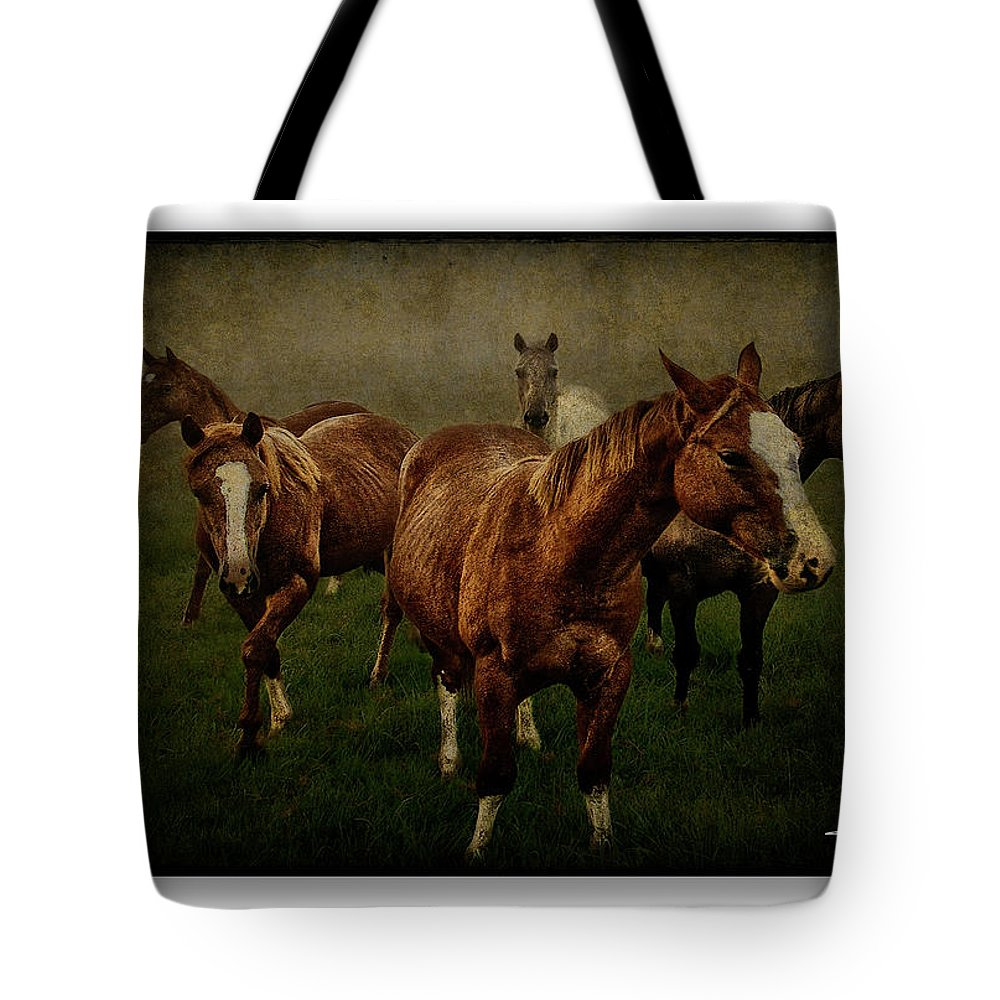 Horses Tote Bag featuring the photograph Horses 31 by Ingrid Smith-Johnsen