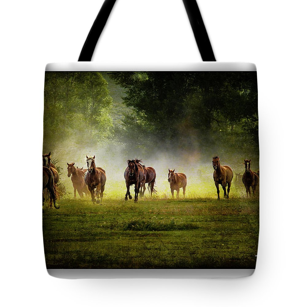 Horses Tote Bag featuring the photograph Horses 36 by Ingrid Smith-Johnsen