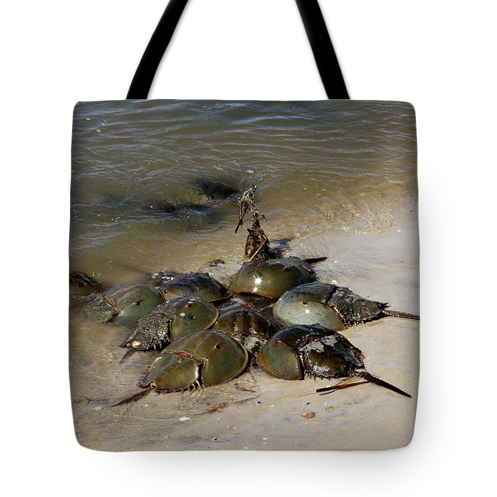 Horseshoe Crab Tote Bag featuring the photograph Horseshoe Crabs by Christiane Schulze Art And Photography