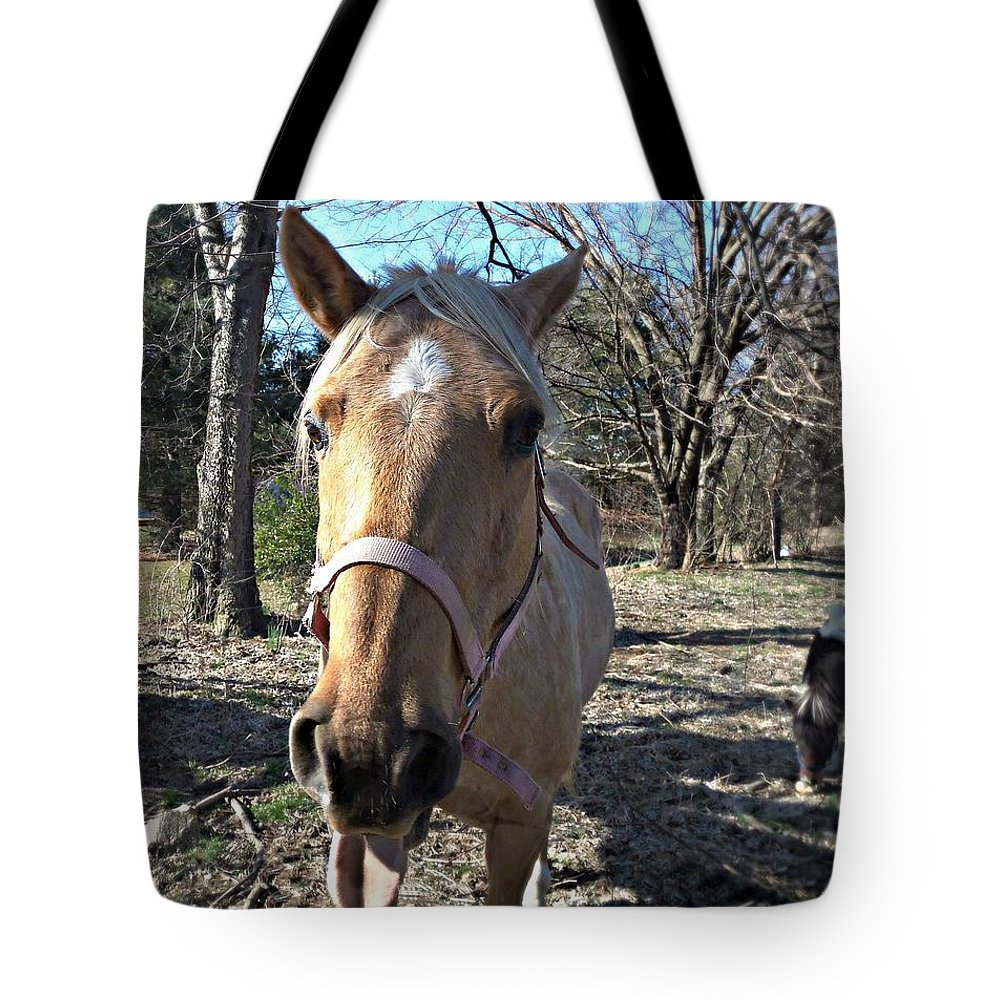 Horse Tote Bag featuring the photograph Horsin' Around by Cassandra Dice