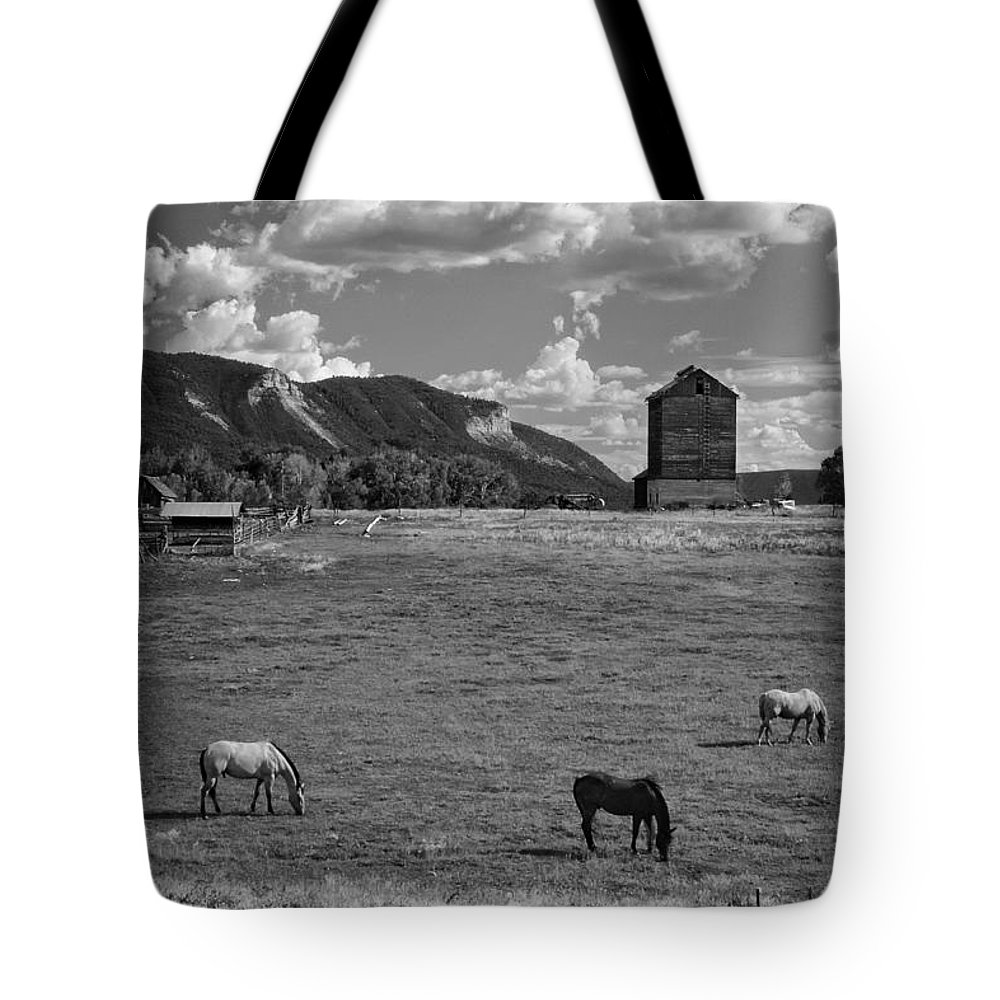 Horses Grazing At Mancos Grain Elevator Tote Bag featuring the photograph Horses Grazing At Mancos Grain Elevator by Priscilla Burgers