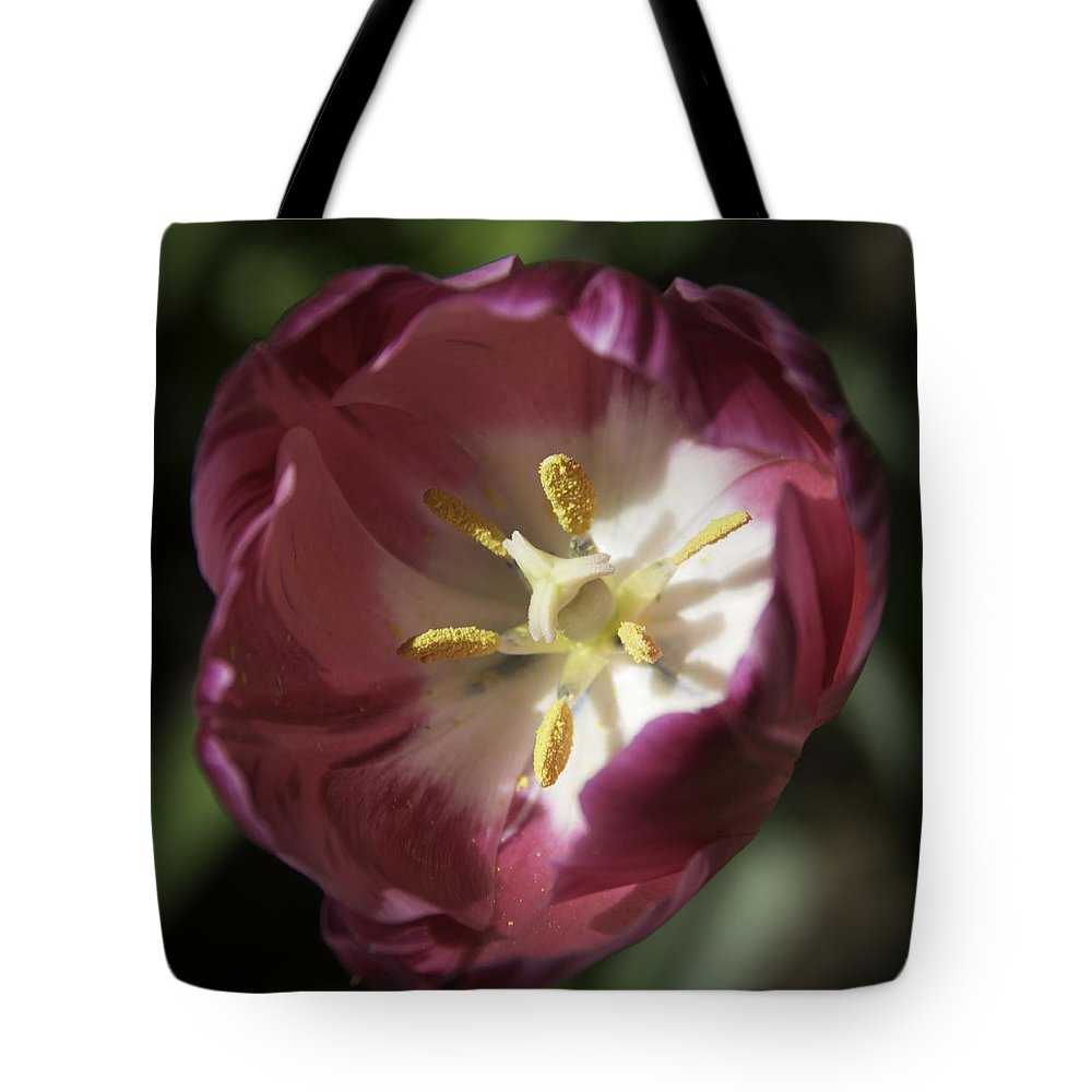 Flowers Tote Bag featuring the photograph Hot Pink Tulip Center Squared by Teresa Mucha