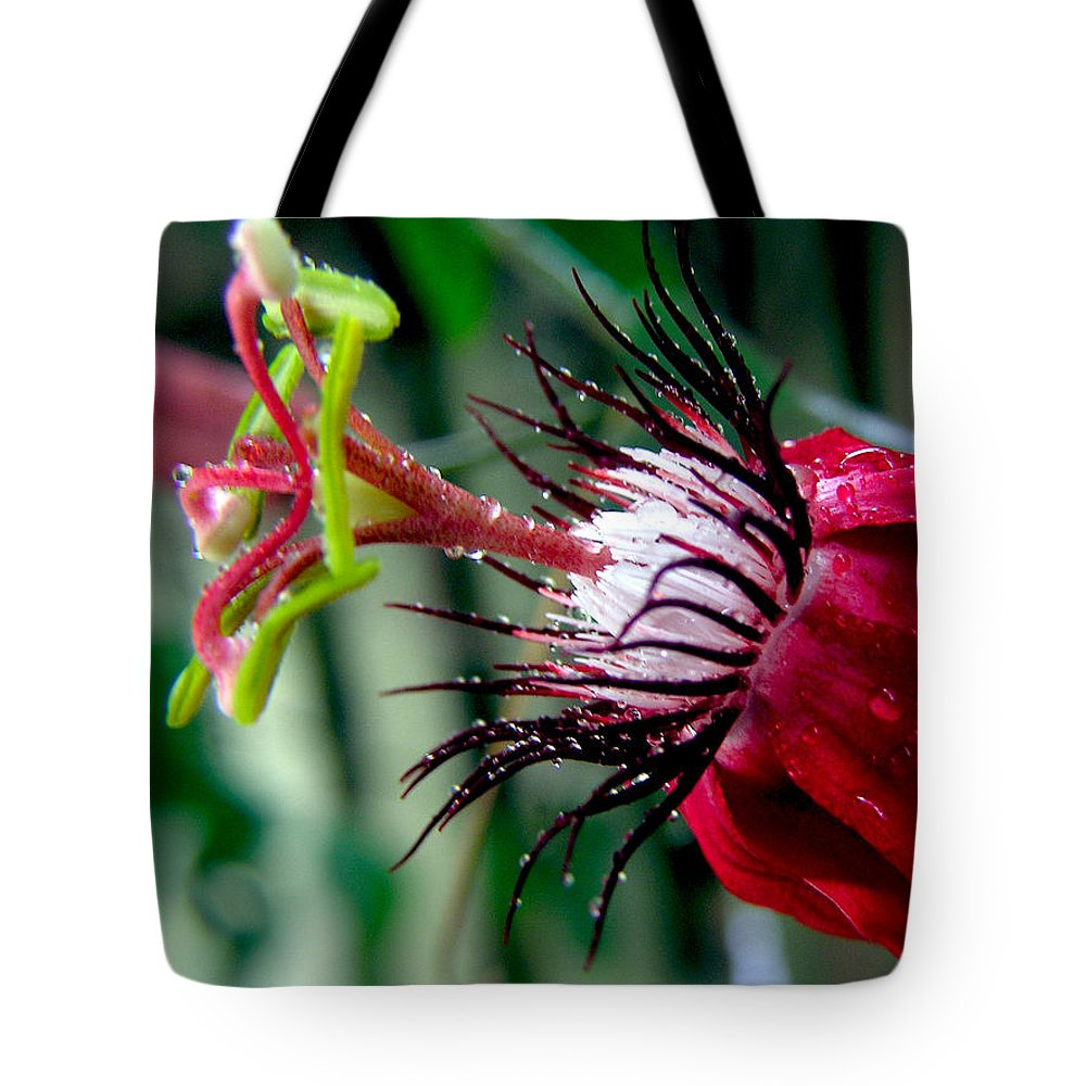 Flowers Tote Bag featuring the photograph Hot Red Passion by Adam Johnson