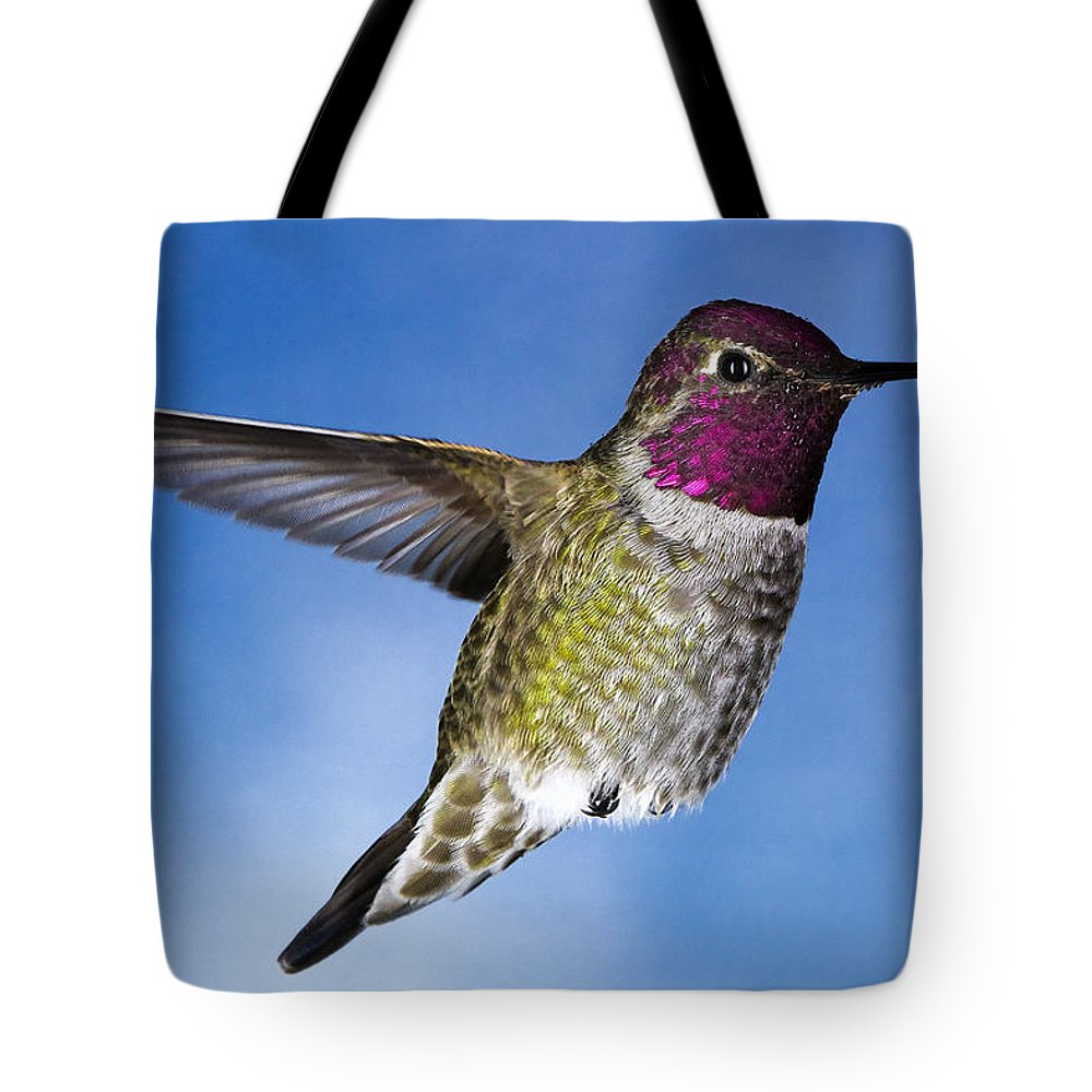 Hummingbird Tote Bag featuring the photograph Hovering In Sky by William Freebillyphotography