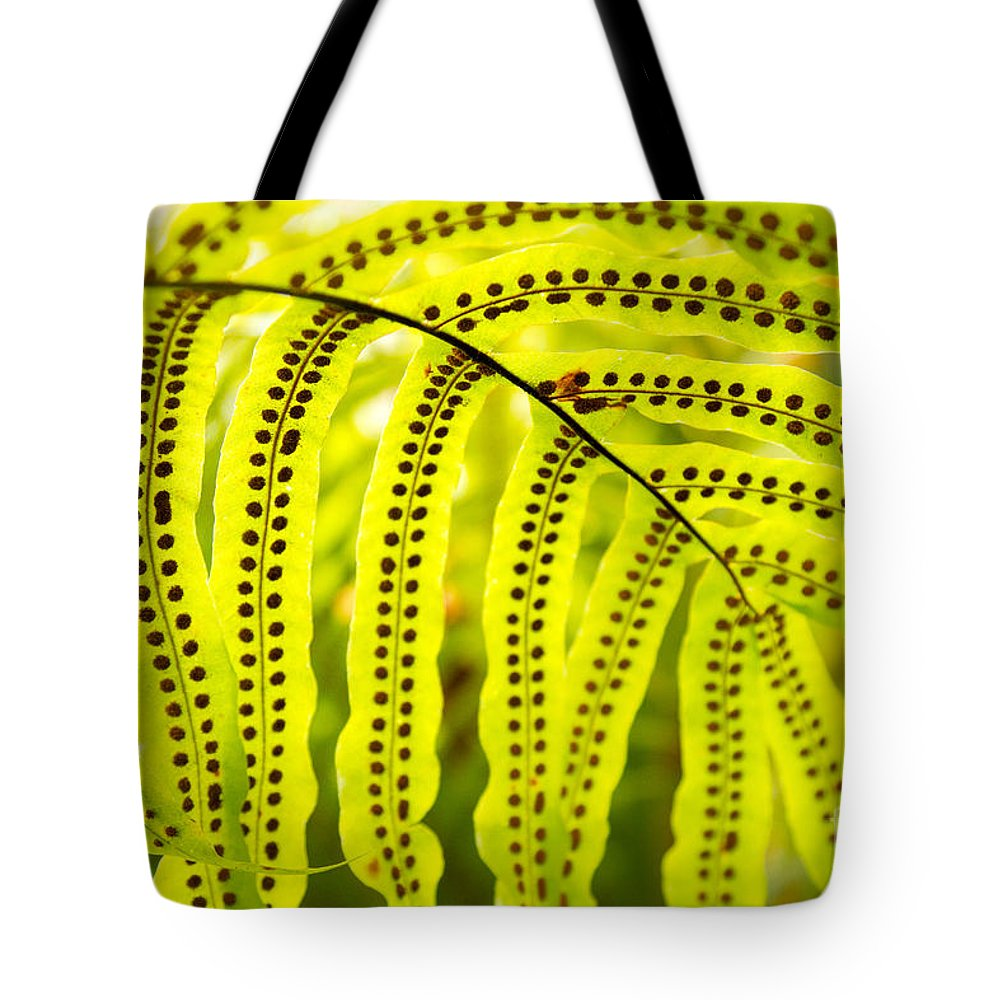 Frond Tote Bag featuring the photograph How Deep is the Ocean by Marilyn Cornwell