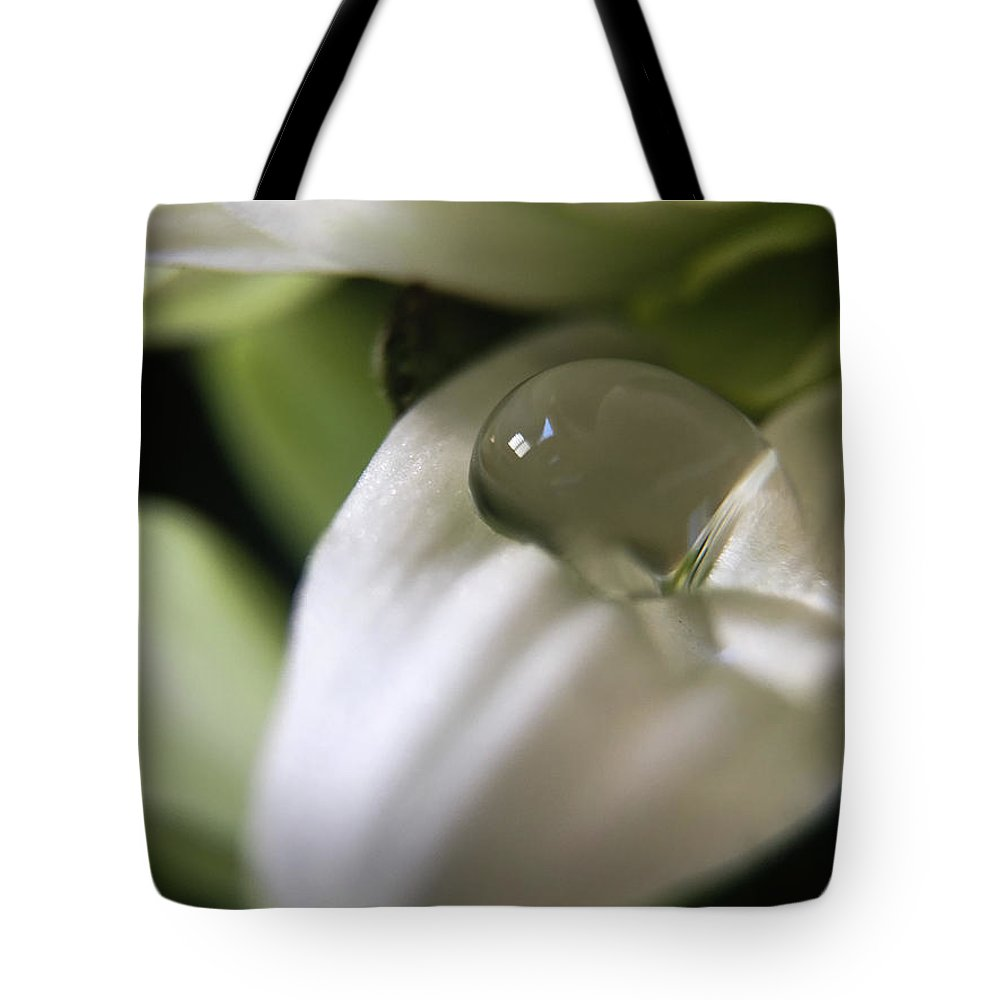 How Still The Petal Tote Bag featuring the photograph How Still The Petal by Robert Yaeger