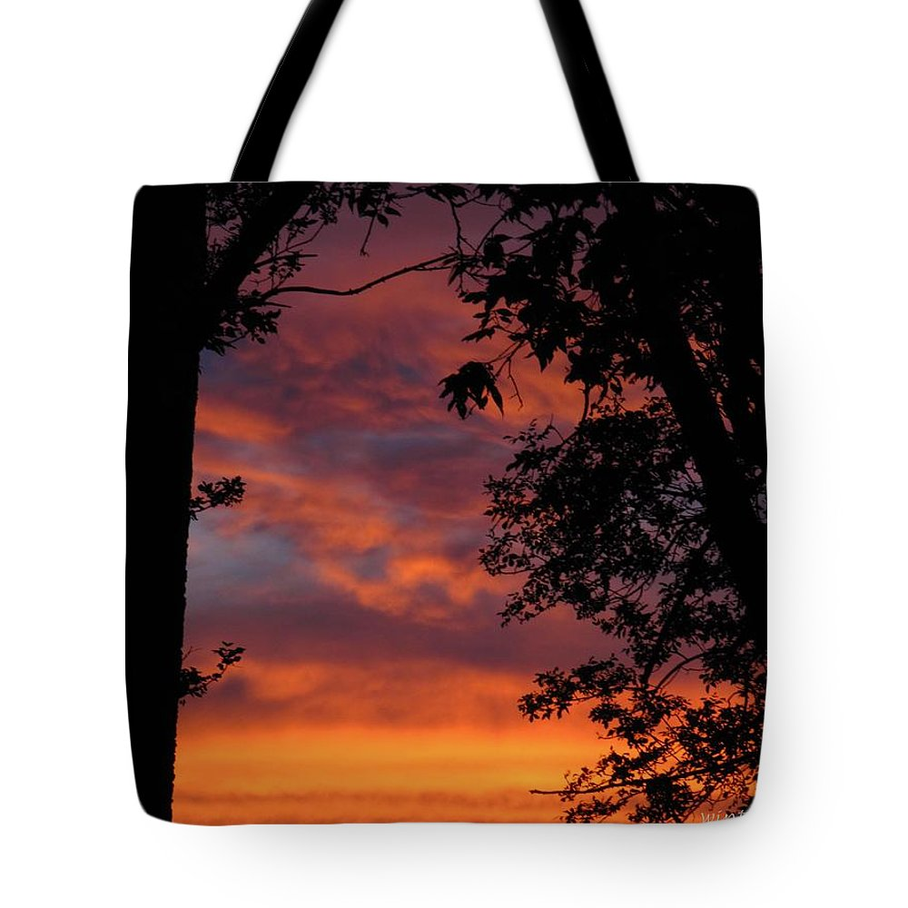 Sunset Tote Bag featuring the photograph Hues Of Orange by Lisa Knauff