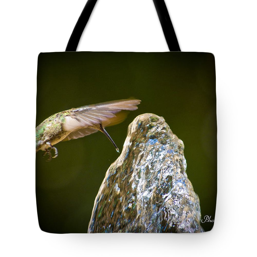 Bird Tote Bag featuring the photograph Humming Bird Hovering Over Water Fountain Getting A Drink by John Tarr Photography Visual Adventurer