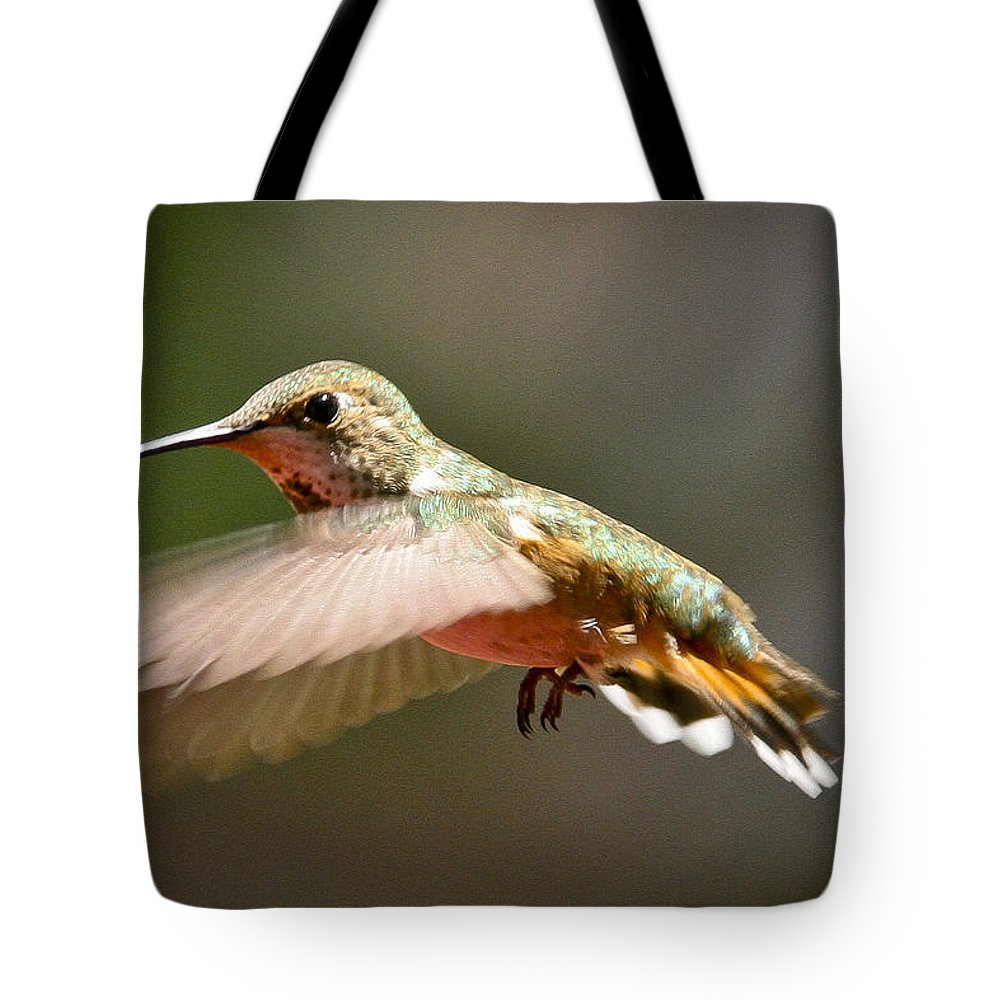 Hummingbird Tote Bag featuring the photograph Hummingbird Facing Left by Albert Seger