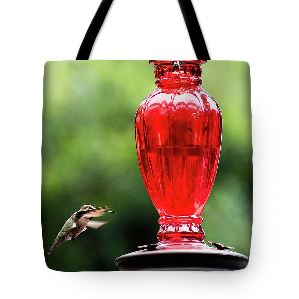 Humming Tote Bag featuring the photograph Hummingbird Feeder by Andrew Fairfield