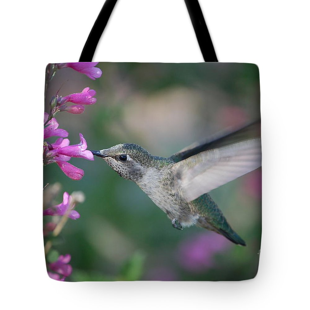 Hummingbird Tote Bag featuring the photograph Hummingbird by Frank Stallone