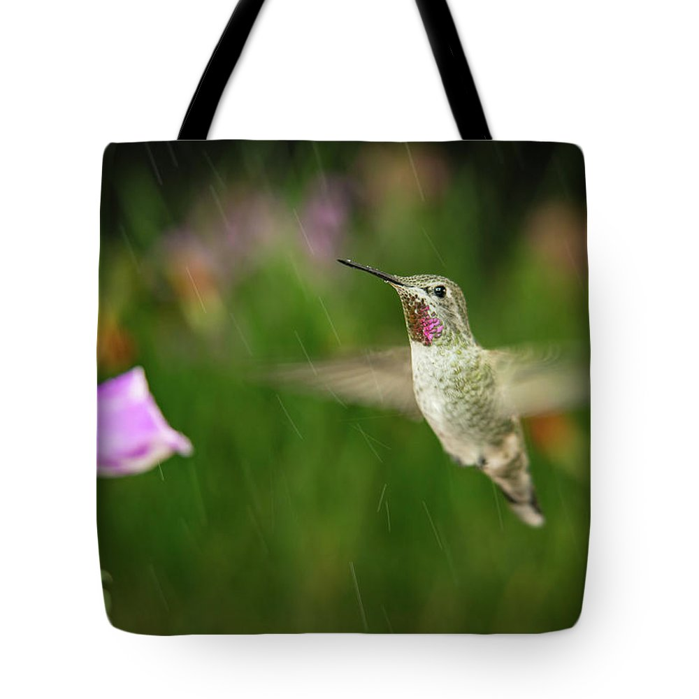 Animal Tote Bag featuring the photograph Hummingbird Hovering In Rain by William Freebilly photography