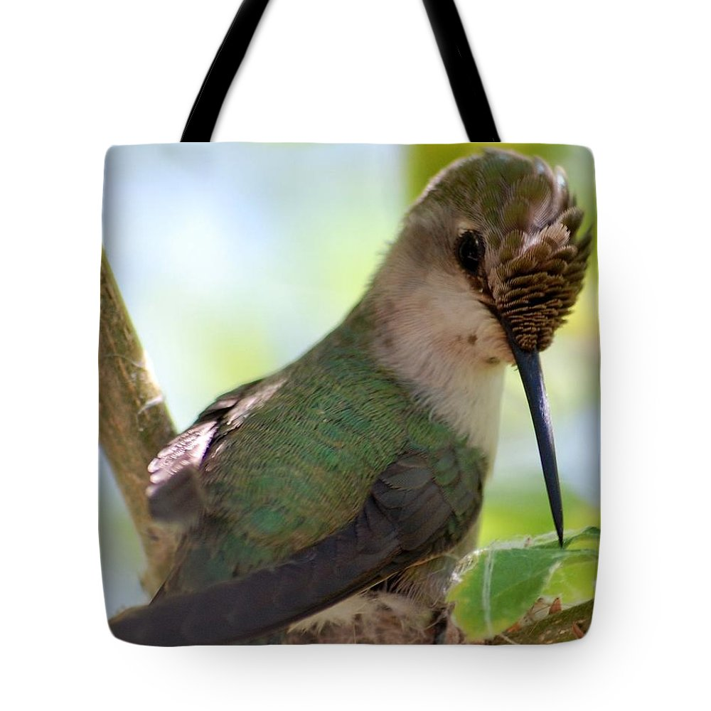 Hummingbird Tote Bag featuring the photograph Hummingbird With Small Nest by Amy Fose