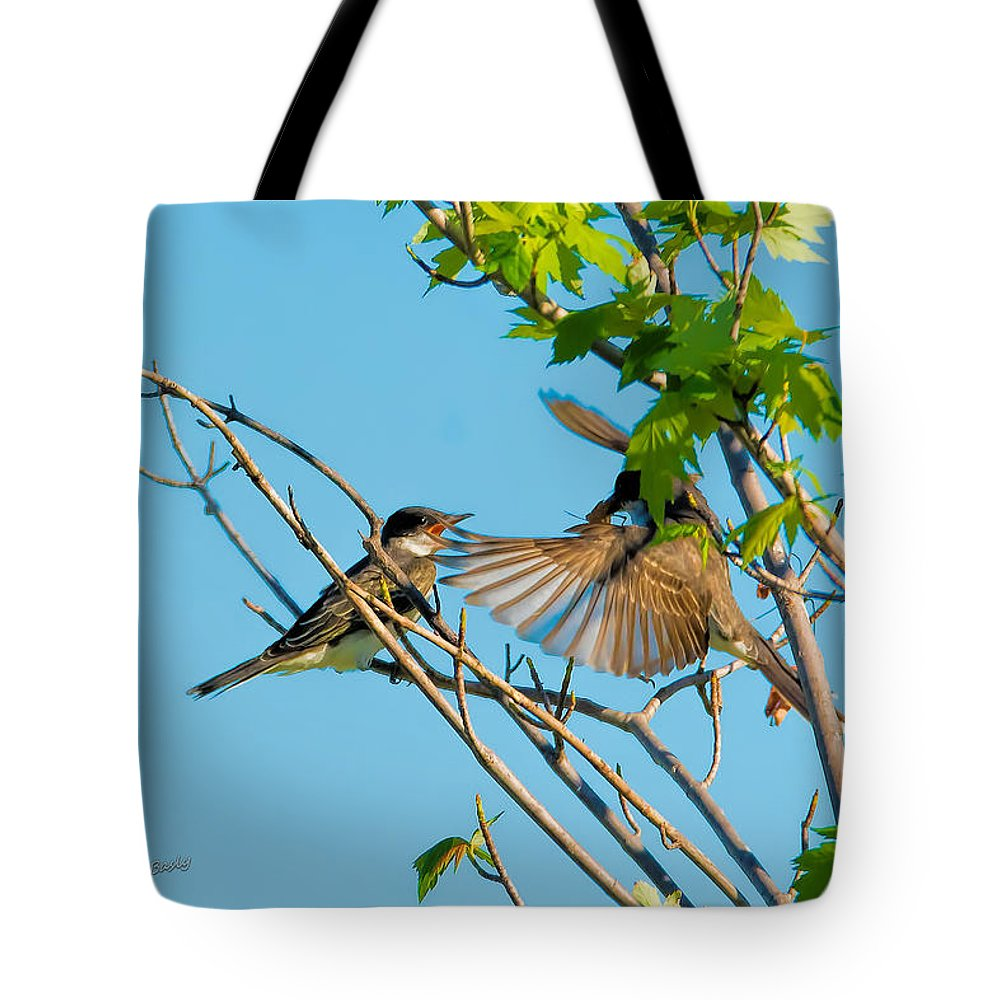 Birds Tote Bag featuring the photograph Hungry Birds In Tree Close-up by S Michael Basly PhotoGraphics By S Michael