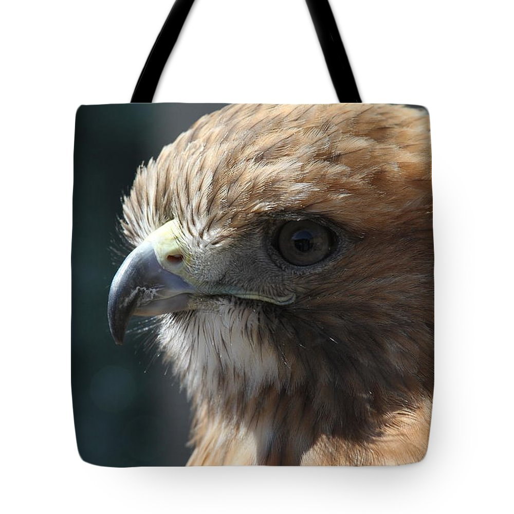 Hawk Tote Bag featuring the photograph Hunter's Spirit by Laddie Halupa