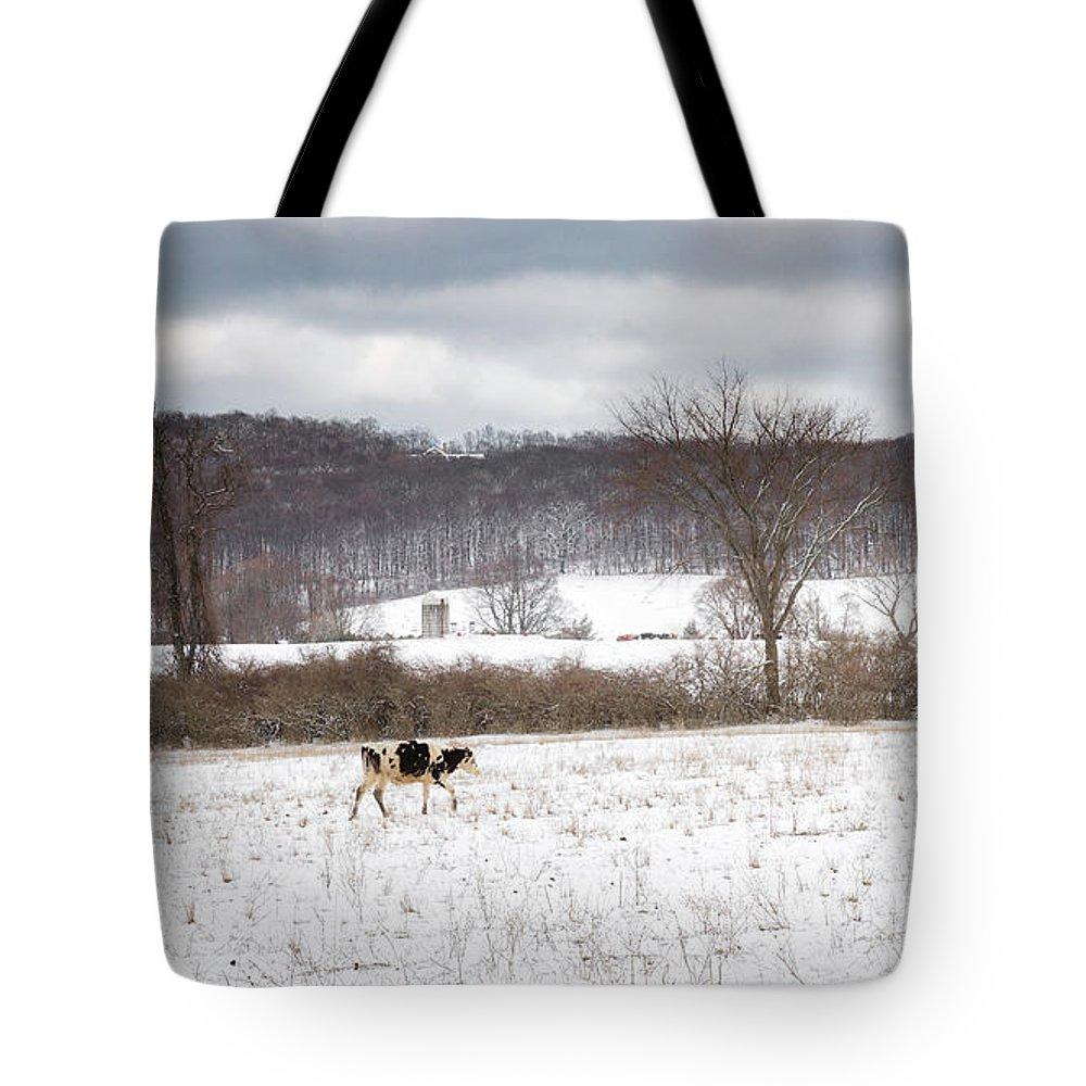 Cow Tote Bag featuring the photograph Hurry Up by Bill Wakeley