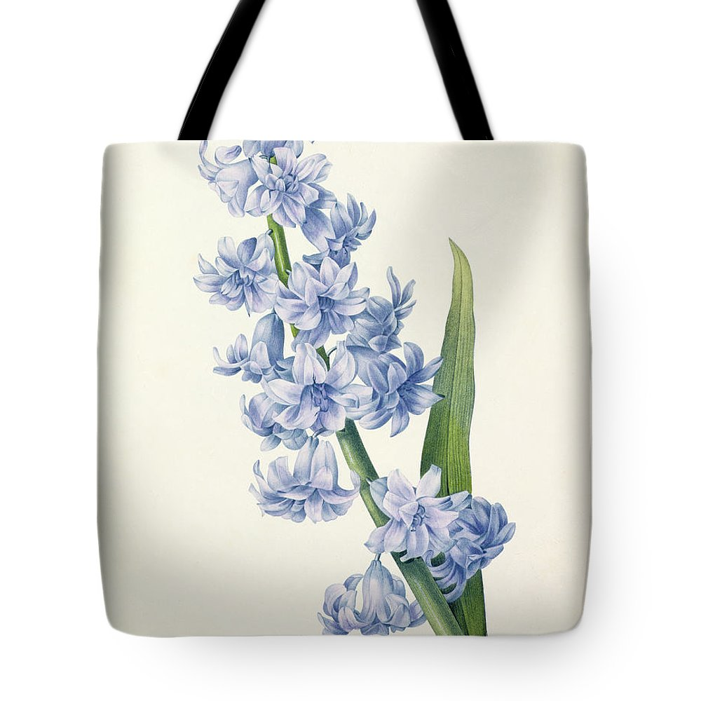 Hyacinthus Tote Bag featuring the drawing Hyacinth by Pierre Joseph Redoute
