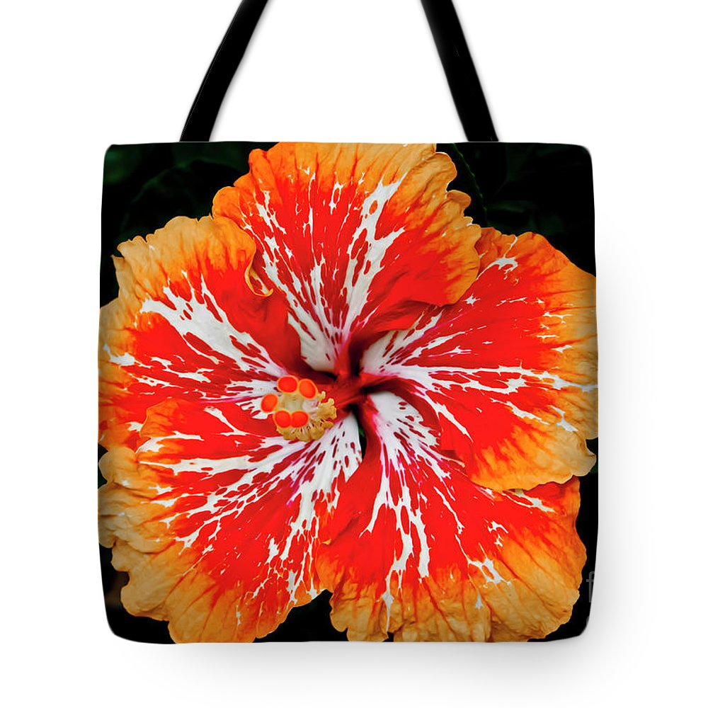 Flower Tote Bag featuring the photograph Hybrid Hibiscus II Maui Hawaii by Jim Cazel