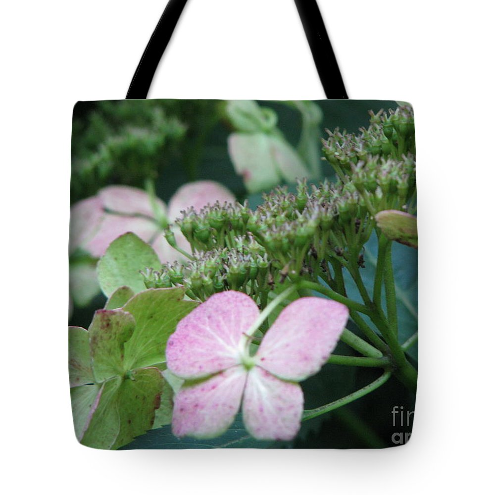 Hydrangea Tote Bag featuring the photograph Hydrangea by Amanda Barcon