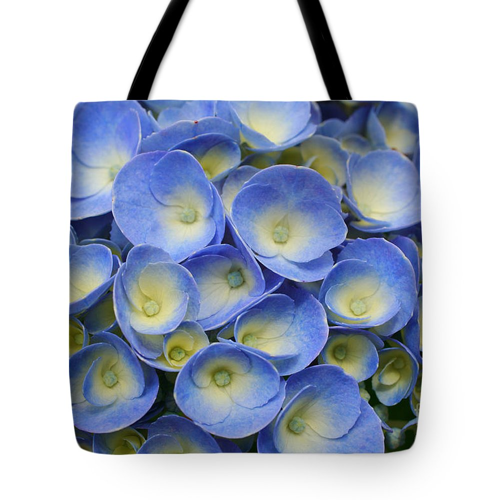 Flora Tote Bag featuring the photograph Hydrangea Closeup by Gaspar Avila