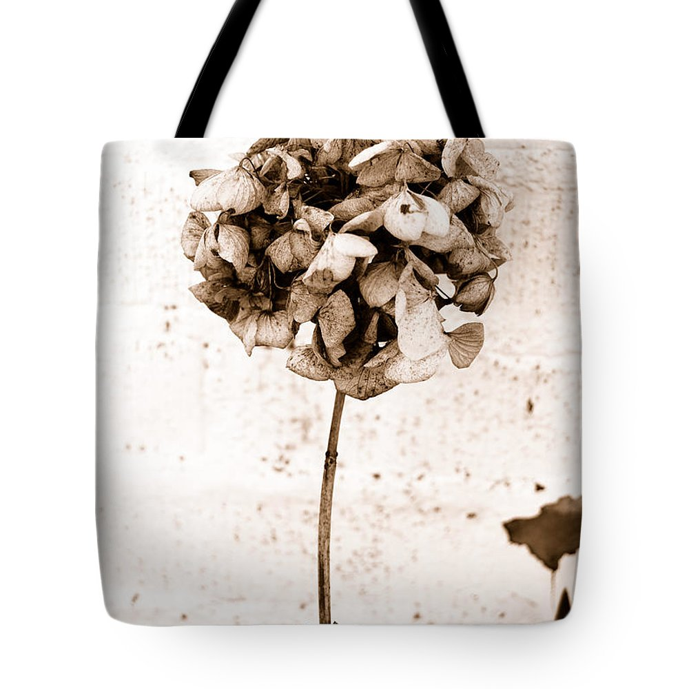 Sepia Tote Bag featuring the photograph Hydrangea Interest by Trish Hale