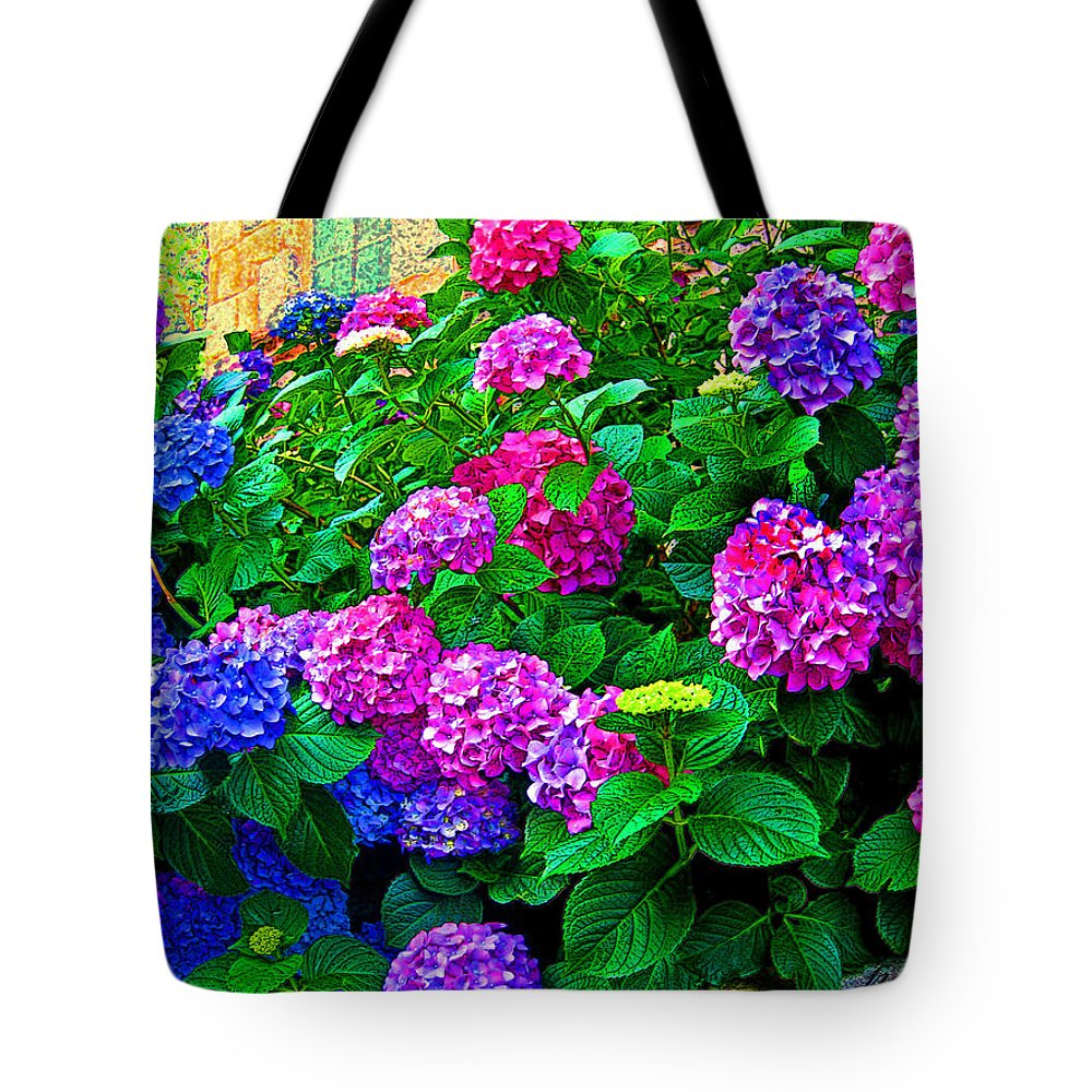 Hydrangeas Tote Bag featuring the photograph Hydrangeas by Susie Slosberg