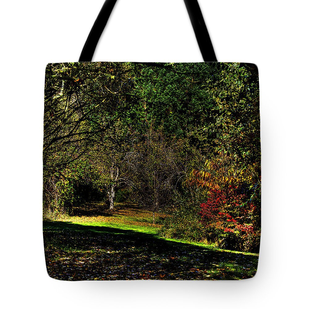 West Hylebos Wetlands Tote Bag featuring the photograph Hylebos In Autumn by David Patterson