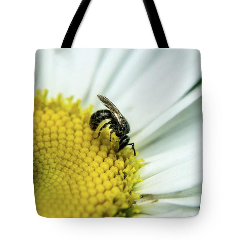 Hymenop Tote Bag featuring the photograph Hymenop On Daisy Feeding On Pollen by Douglas Barnett