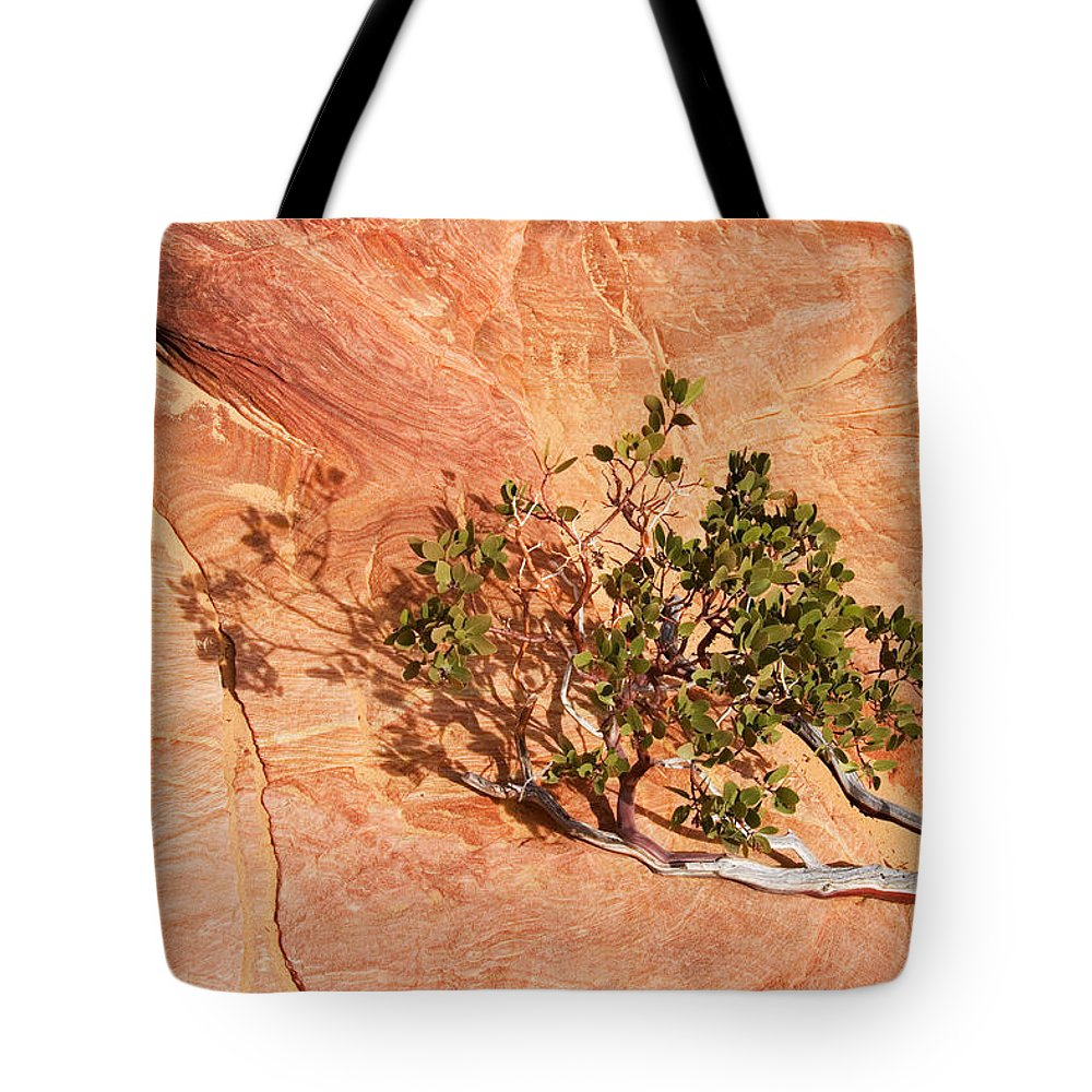 Vine Tote Bag featuring the photograph I Am The Vine by Mike Dawson