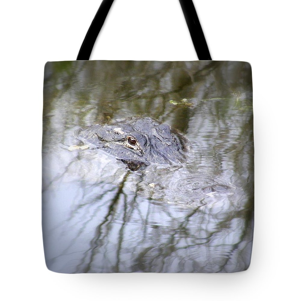 Alligator Tote Bag featuring the photograph I Am Watching by Ed Smith