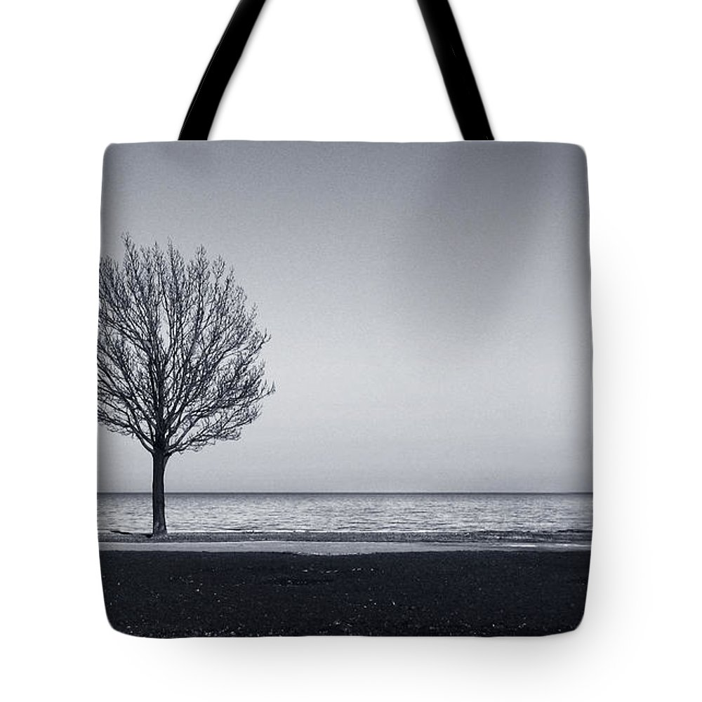 Tree Tote Bag featuring the photograph I Didnt Hear You Leaving by Dana DiPasquale