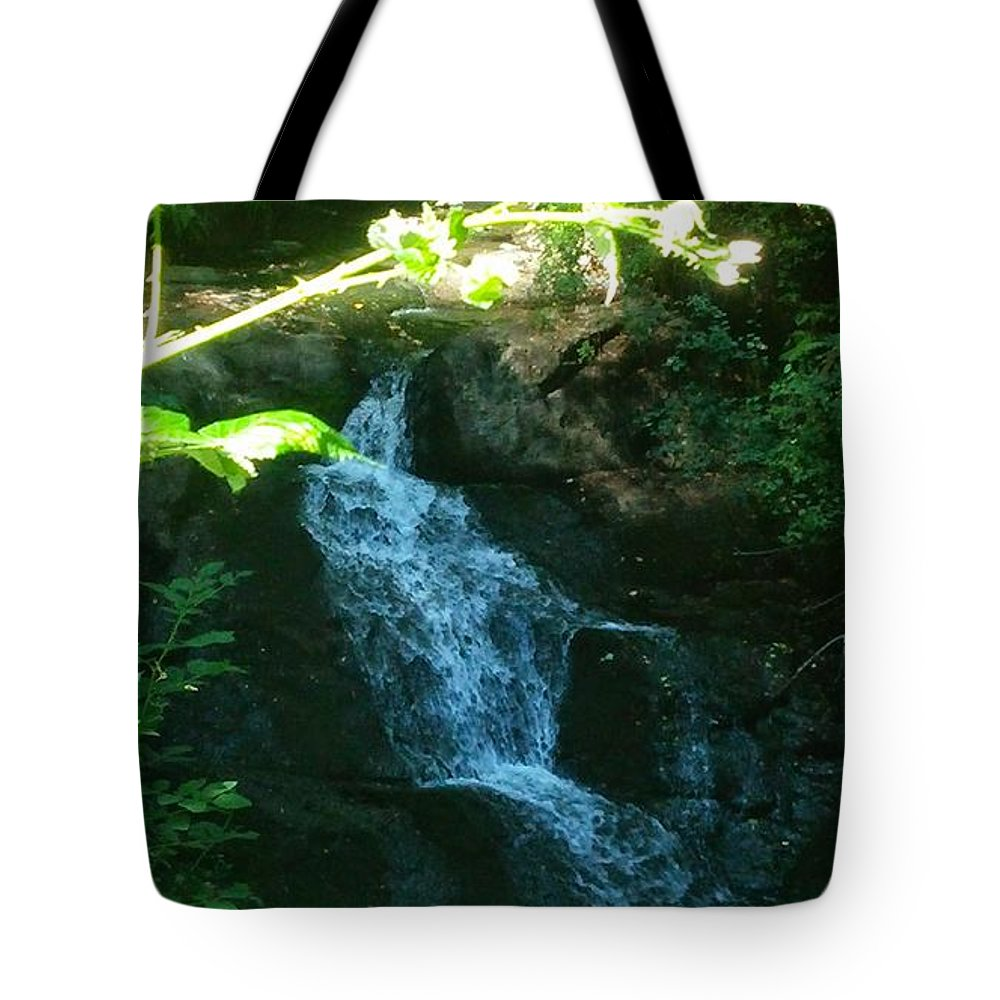 Landscape Tote Bag featuring the photograph I Do Believe In Fairies by Delila Wysong