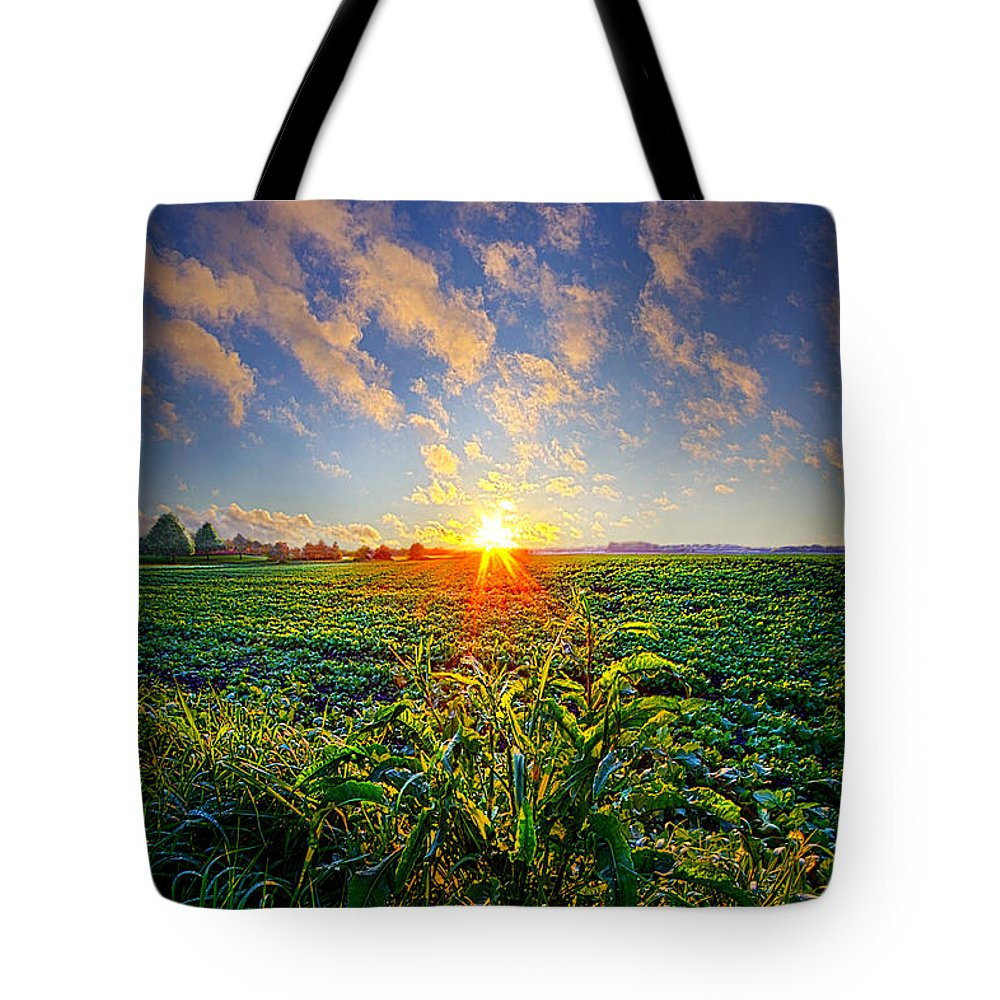 Spring Tote Bag featuring the photograph I Don't Live To Be by Phil Koch