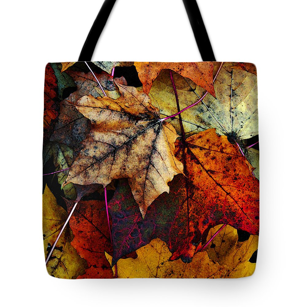 Fall Color Tote Bag featuring the photograph I Love Fall 2 by Joanne Coyle