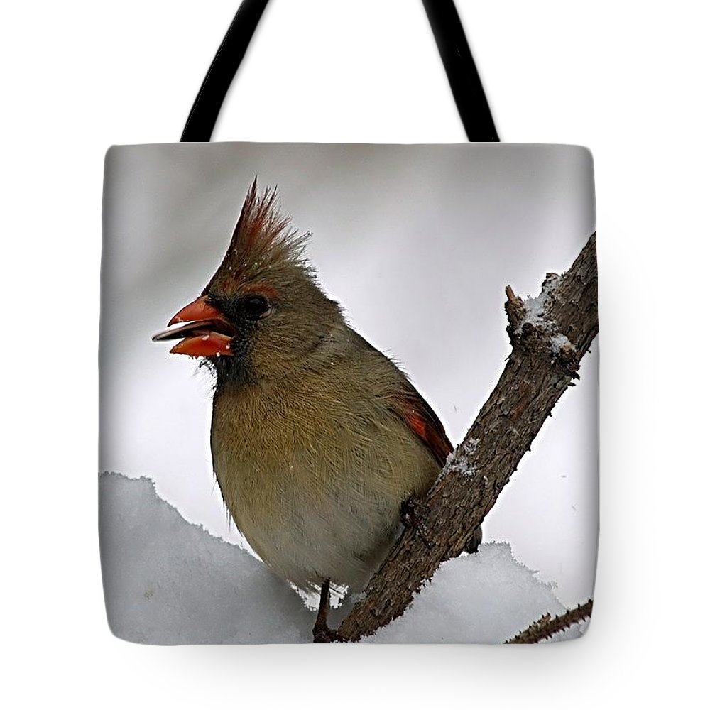 Bird Tote Bag featuring the photograph I Love Seeds by Gaby Swanson