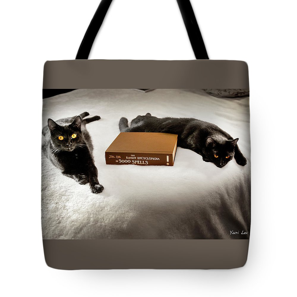 Cats Tote Bag featuring the photograph I Put A Spell On You by Yuri Lev