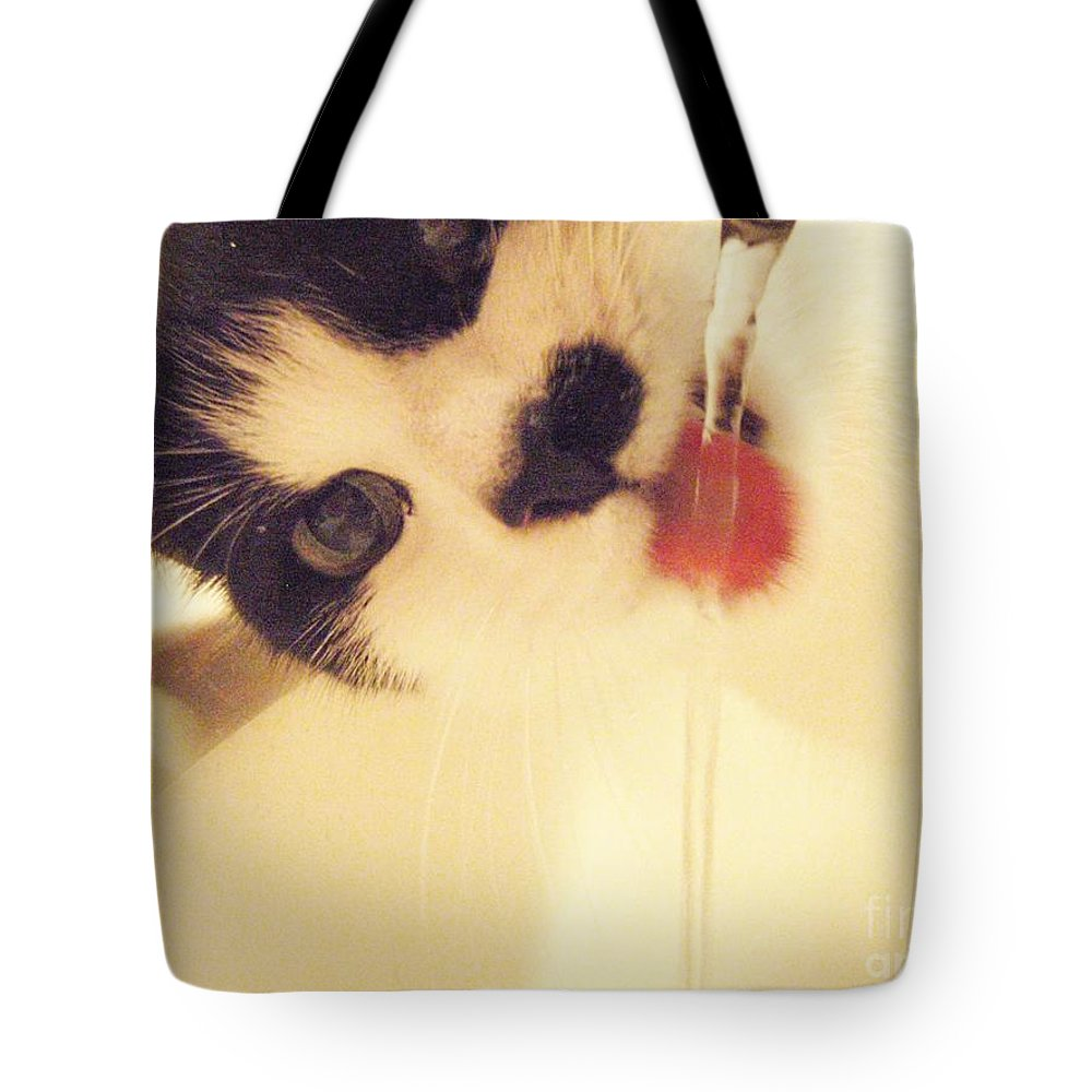 Cat Water Black White Tongue Pink Love Tote Bag featuring the photograph I See You by Kristine Nora