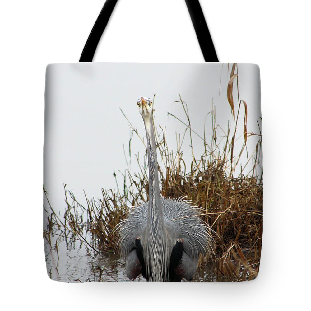 Blue Heron Tote Bag featuring the photograph I See You by Nick Gustafson